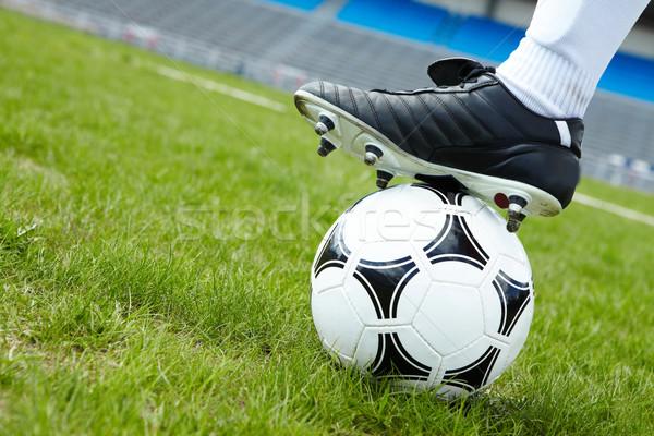 Stok fotoğraf: Futbol · topu · yatay · görüntü · yeşil · ot · ayak · oyuncu