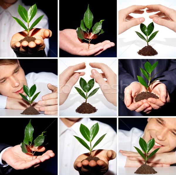 Environmental protection Stock photo © pressmaster