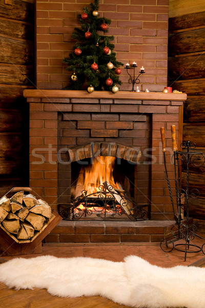 Hearth Stock photo © pressmaster
