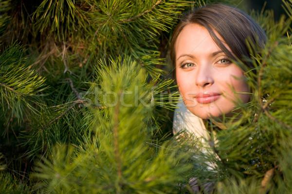 Forest nymph Stock photo © pressmaster