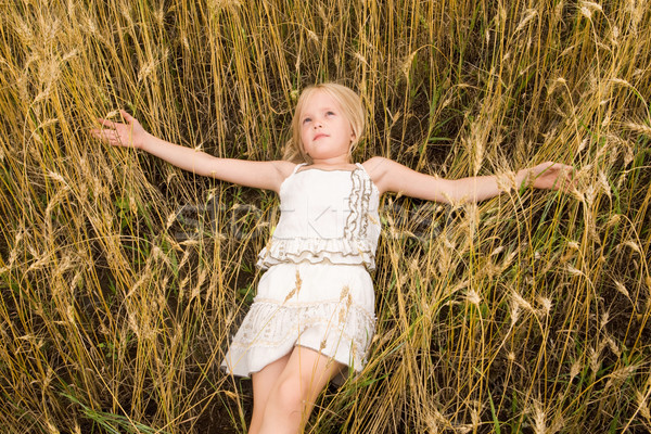 девушки изображение молодой пшеницы мирный Сток-фото © pressmaster