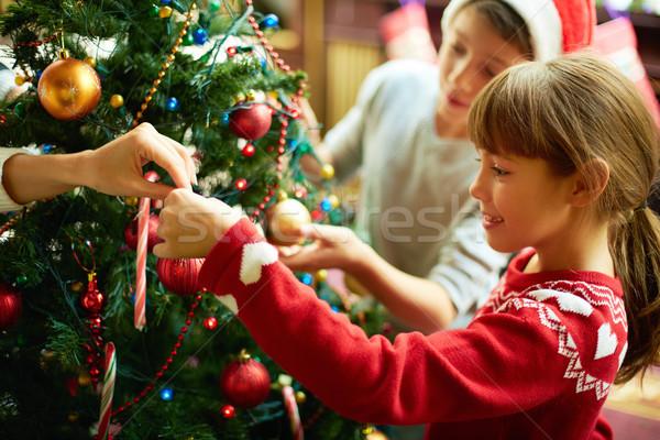 Christmas preparations Stock photo © pressmaster