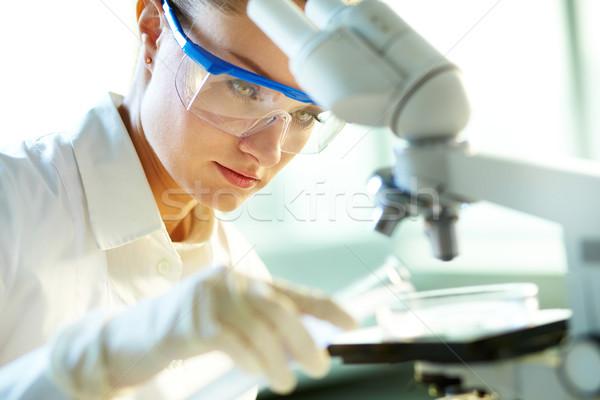 Wetenschappelijk experiment vrouwelijke lab werknemer vinden Stockfoto © pressmaster