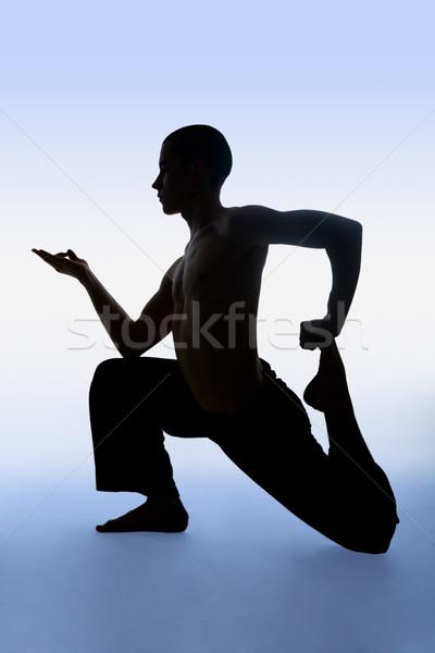 Gimnasztikai portré mozdíthatatlan férfi jóga testmozgás Stock fotó © pressmaster