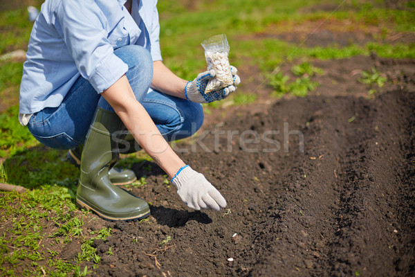 Zaaien zaad afbeelding vrouwelijke landbouwer tuin Stockfoto © pressmaster