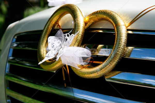 Two rings Stock photo © pressmaster