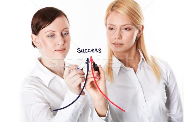 Way to success Stock photo © pressmaster