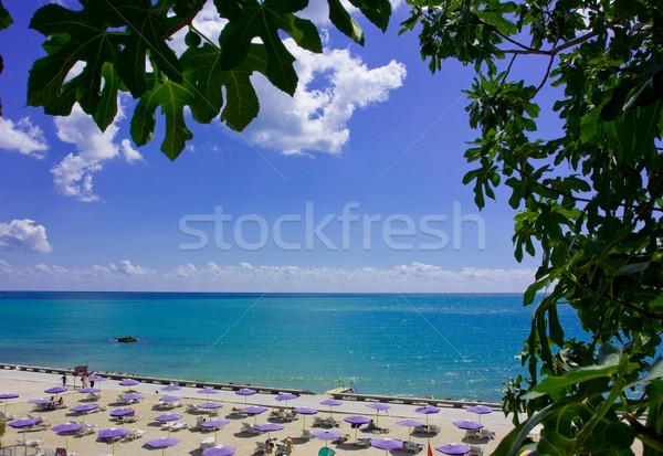 beach Stock photo © prg0383