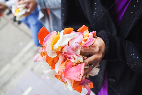 Rózsaszirmok pálmafák közelkép nő rózsák piros Stock fotó © prg0383