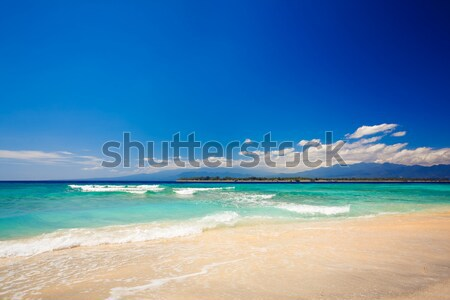 beach at summertime Stock photo © prg0383