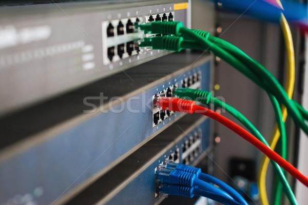 Blauw Rood groene netwerk kabels schakelaar Stockfoto © prg0383