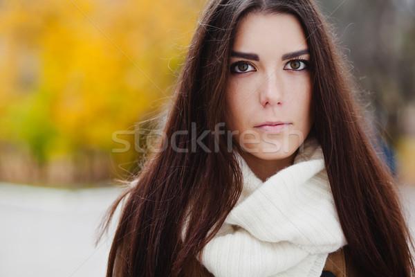Gyönyörű elegáns nő ősz áll park Stock fotó © prg0383