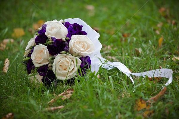 Sevmek dizayn yaprak bitki Stok fotoğraf © prg0383