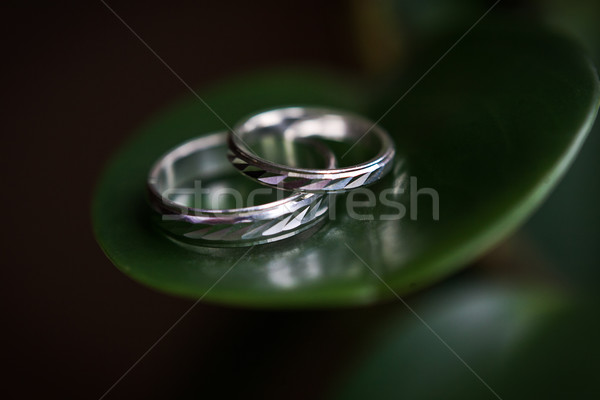 gold wedding rings Stock photo © prg0383