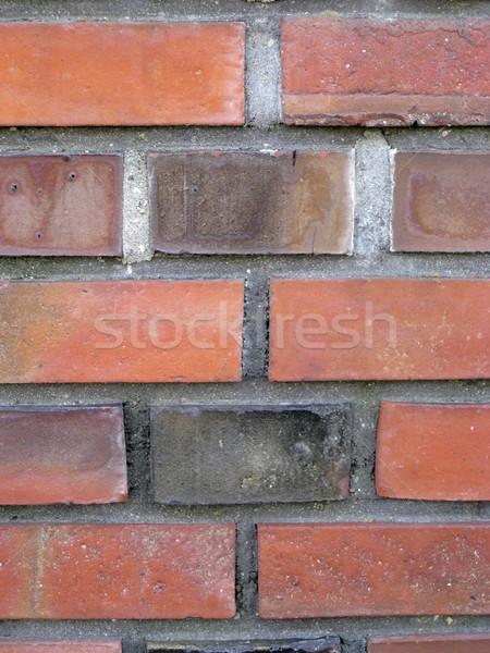 brick wall detail Stock photo © prill