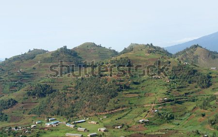 aerial view around Virunga Mountains in Uganda Stock photo © prill