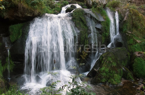 idyllic Triberg Waterfalls Stock photo © prill