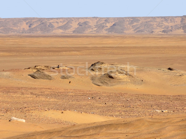 Körül sivatag díszlet történelmi oázis Egyiptom Stock fotó © prill