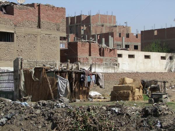 スラム 風景 ギザ エジプト 住宅 ストックフォト © prill