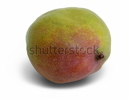 mango fruit in white back Stock photo © prill