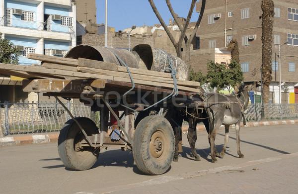 Stock photo: donkey cart in Egypt