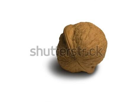 walnut Stock photo © prill