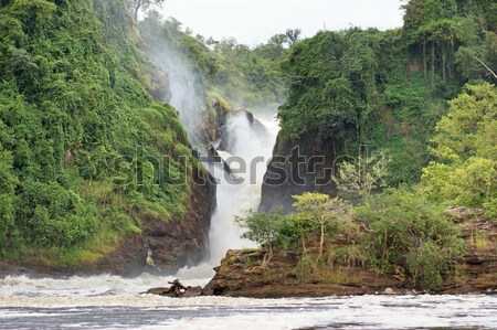 River Nile with Murchison Falls Stock photo © prill