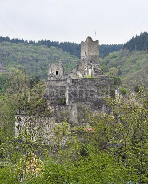 ruin in the Eifel Stock photo © prill