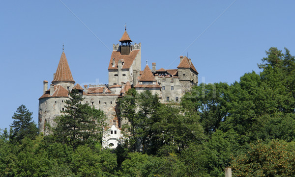 Bran Castle Stock photo © prill