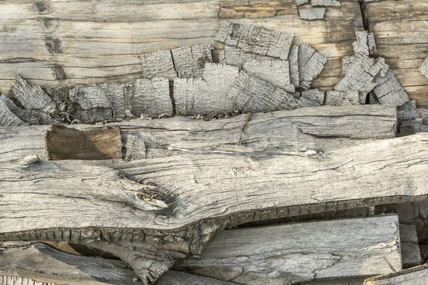 abstract wooden background Stock photo © prill
