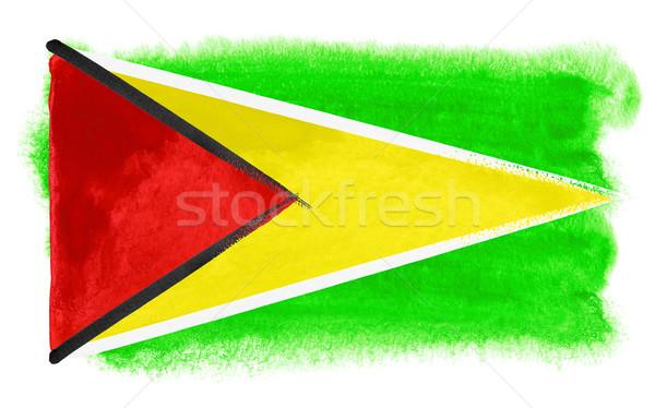Guyana zászló illusztráció vízfesték háttér művészet Stock fotó © prill