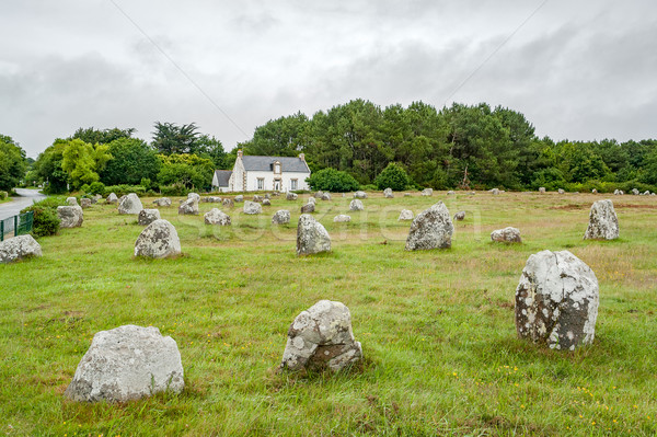 Carnac stones in Brittany Stock photo © prill