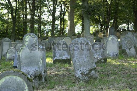 old gravestones backside Stock photo © prill