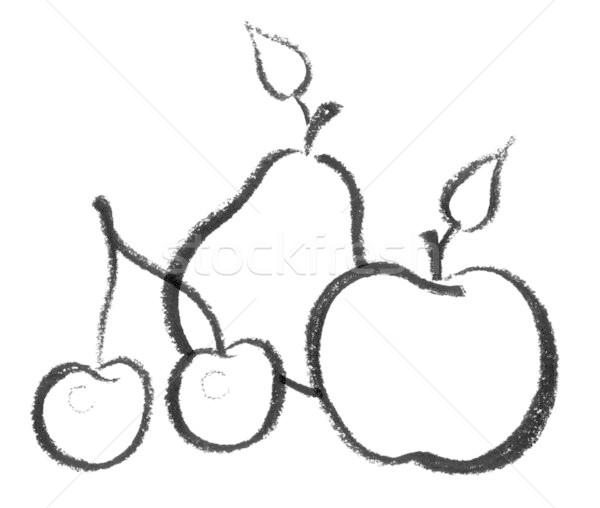 fruit icon Stock photo © prill