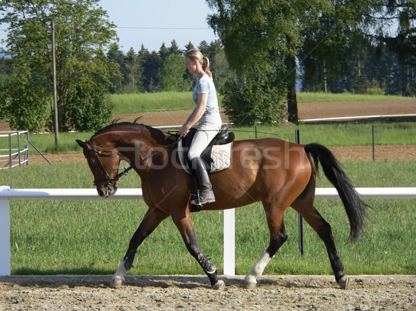 Stock photo: horse riding young blonde woman