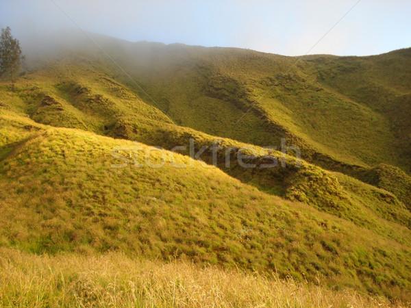 hilly grassland around Mount Rinjani Stock photo © prill