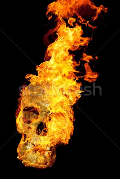 burning skull Stock photo © prill