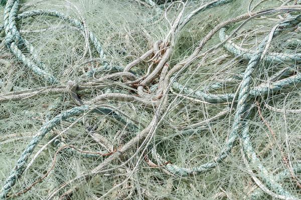 漁網 クローズアップ フルフレーム パターン 純 行 ストックフォト © prill