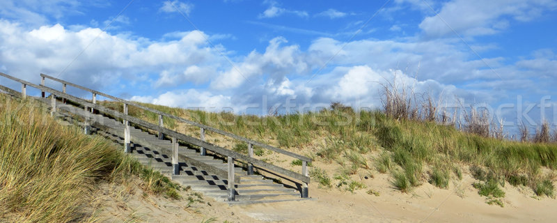 Pays-Bas ensoleillée paysages escaliers plage mer Photo stock © prill