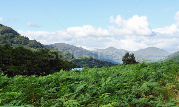 Loch Lomond in Scotland Stock photo © prill