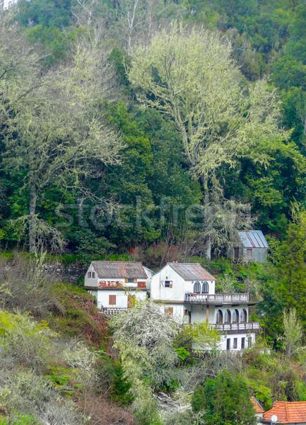 острове мадера декораций природы горные путешествия Сток-фото © prill