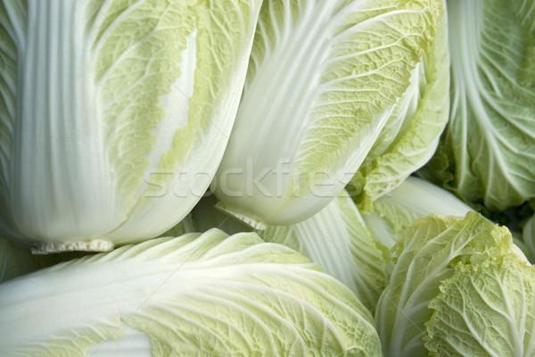 Tam kare marul taze detay yaprak salata Stok fotoğraf © prill