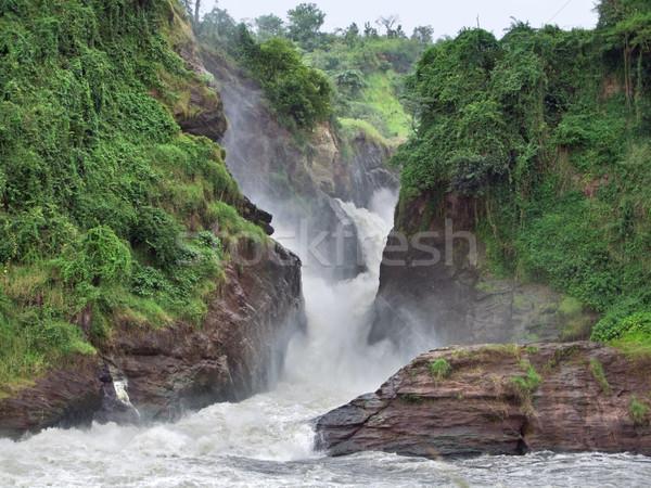 idyllic Murchison Falls Stock photo © prill
