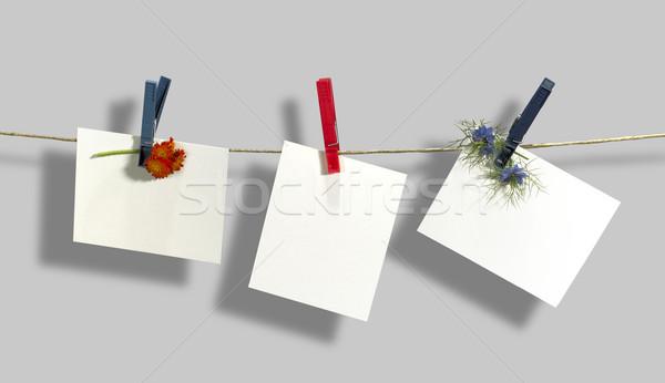 Waslijn witte bloemen vast kleding Stockfoto © prill