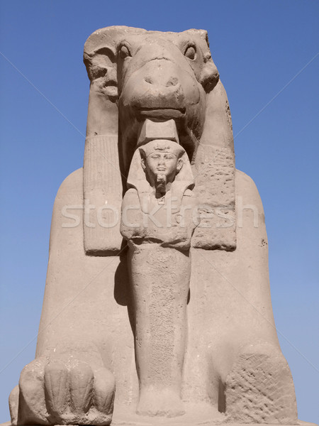 ancient Sphinx in sunny ambiance Stock photo © prill
