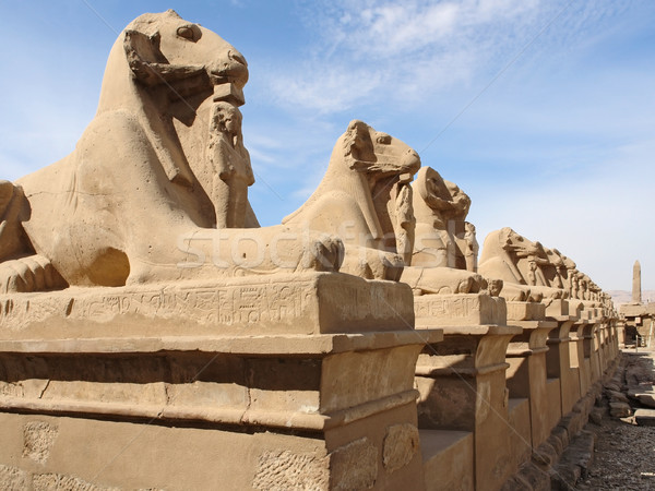 sculptures at Precinct of Amun-Re in Egypt Stock photo © prill