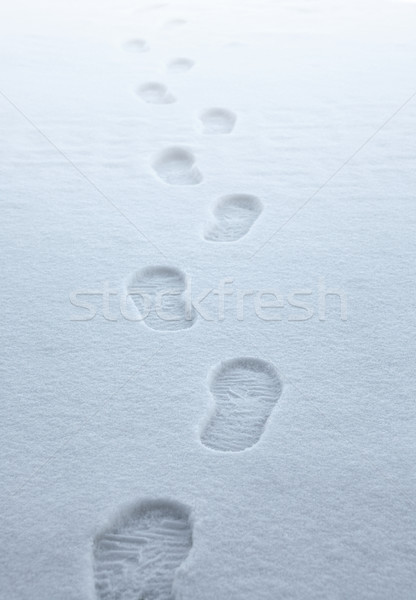 boot traces in the snow Stock photo © prill