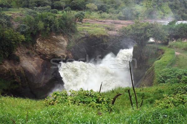 Stock fotó: Fölött · Uganda · magasról · fotózva · részlet · Afrika · természet