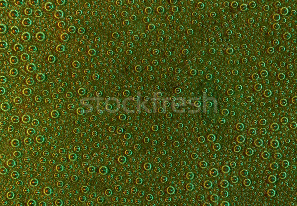 air bubbles Stock photo © prill