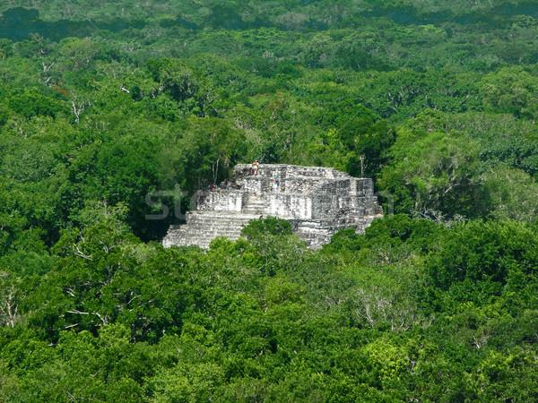 Tempel archeologische plaats Mexicaanse boom steen Stockfoto © prill